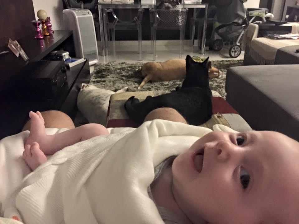 Ter um filho(a) na teoria e na prática